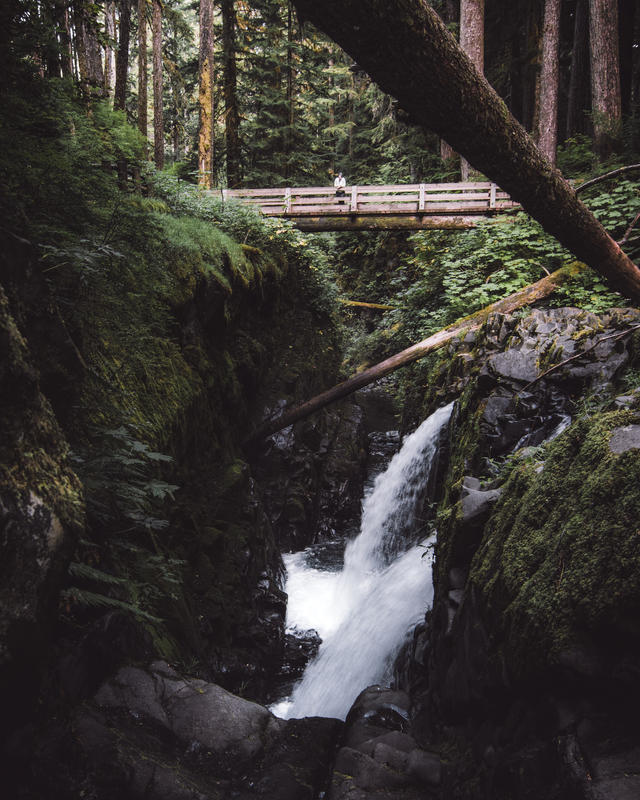 Sol Duc Falls (3)-2.jpg