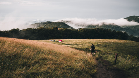 Max Patch Mountain, NC