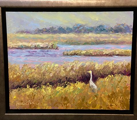 Egret - Tomales Bay