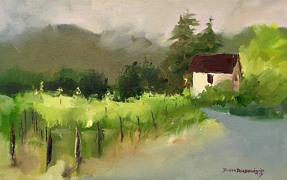 Farmhouse in the Vineyard