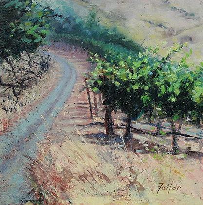 Vineyard #3