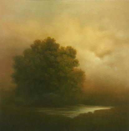 Tree Pond #2768