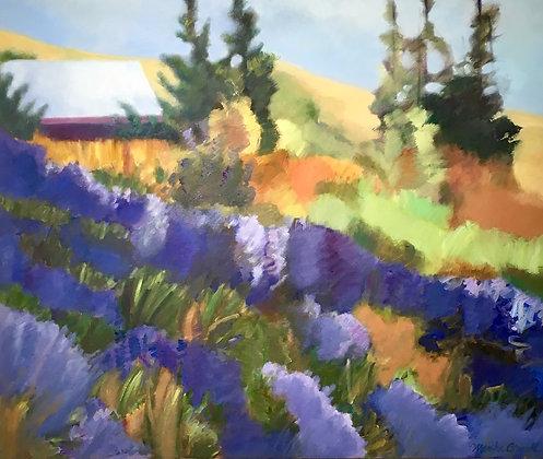 Lavender Surround