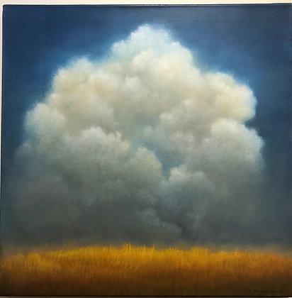 Blue Sky Wheat #3127