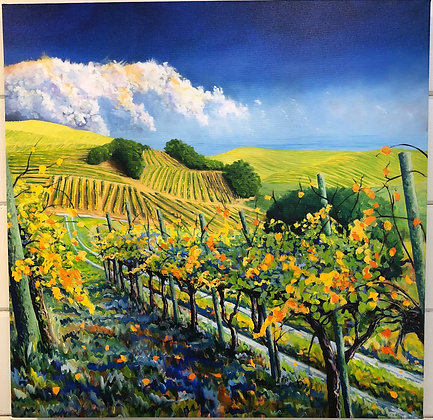 Coastal Vineyard