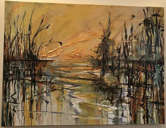 Wetlands #2827