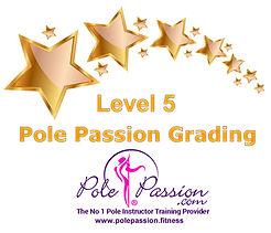 Pole Passion Grading Level 5.jpg
