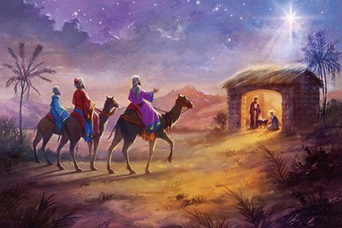 19149 Starlit Nativity