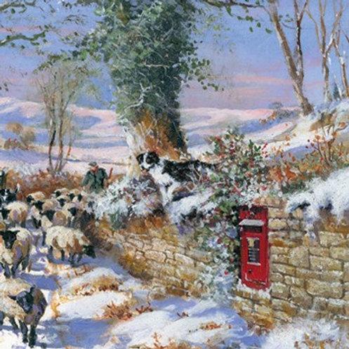 GW03 The Shepherd