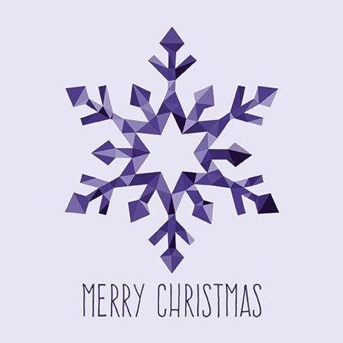 NKF17263 Christmas Snowflake
