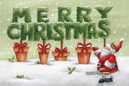 AFC15247 Santa's Garden