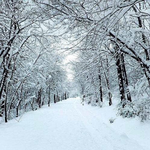 CH09 Winter Scene
