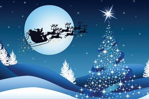 10141 Magical Christmas