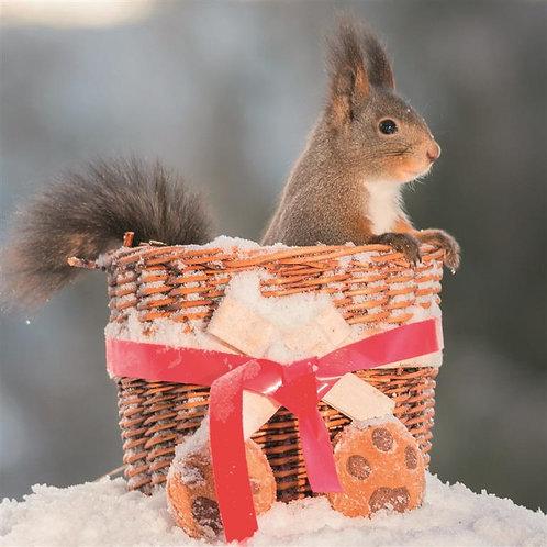 LHM03 Squirrels Favourite Hamper
