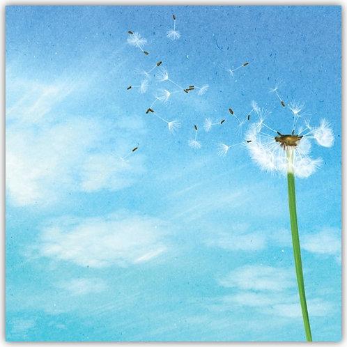 DT18005 Dandelion Dreams