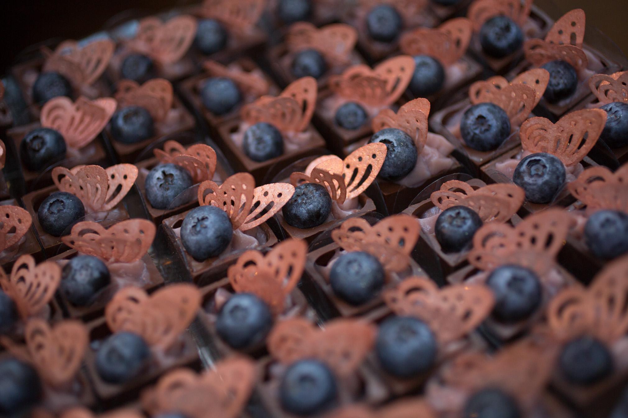 Borboleta e Blueberry