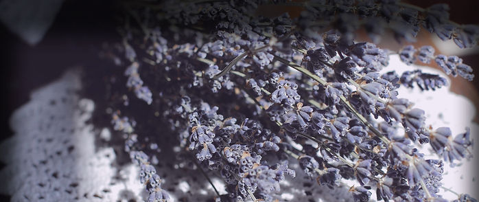 lavender-on-table.jpg