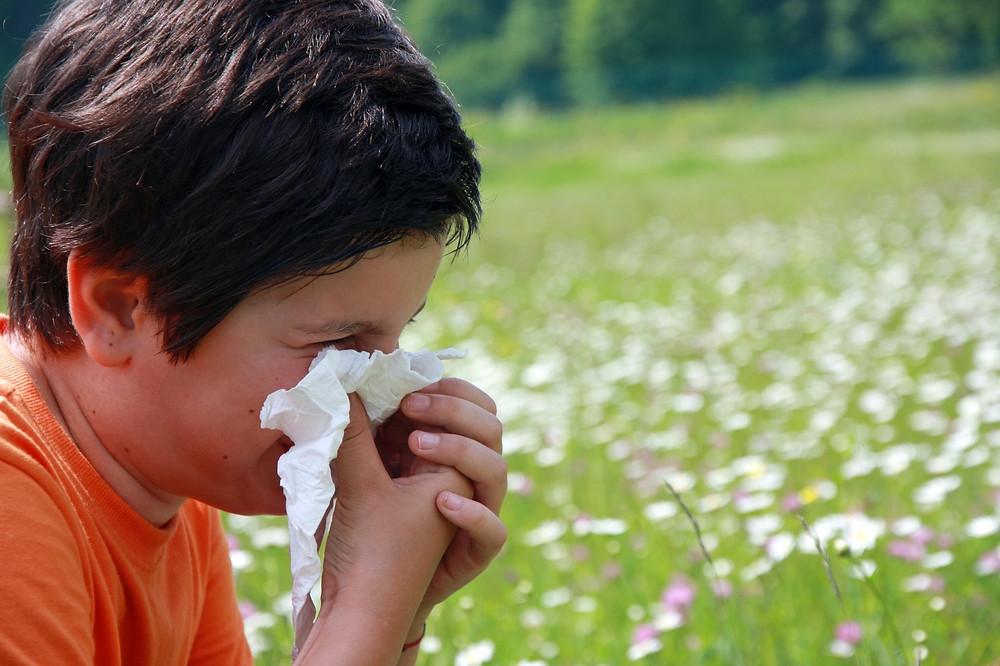 rinitis alérgica Otorrinolaringología