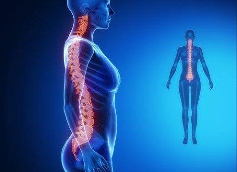 🇮🇹 I disturbi della colonna vertebrale