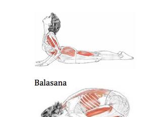 🇮🇹 Yoga e shiatsu per la cervicalgia