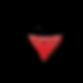 Logo P2 300 (RGB)2.png