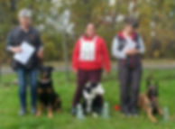 bundessiegerprüfung_Rettungshundesport_e