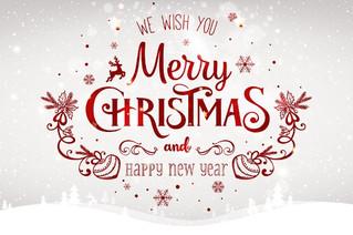 Auguriamo a tutti un felice Natale e un gioioso anno nuovo!!