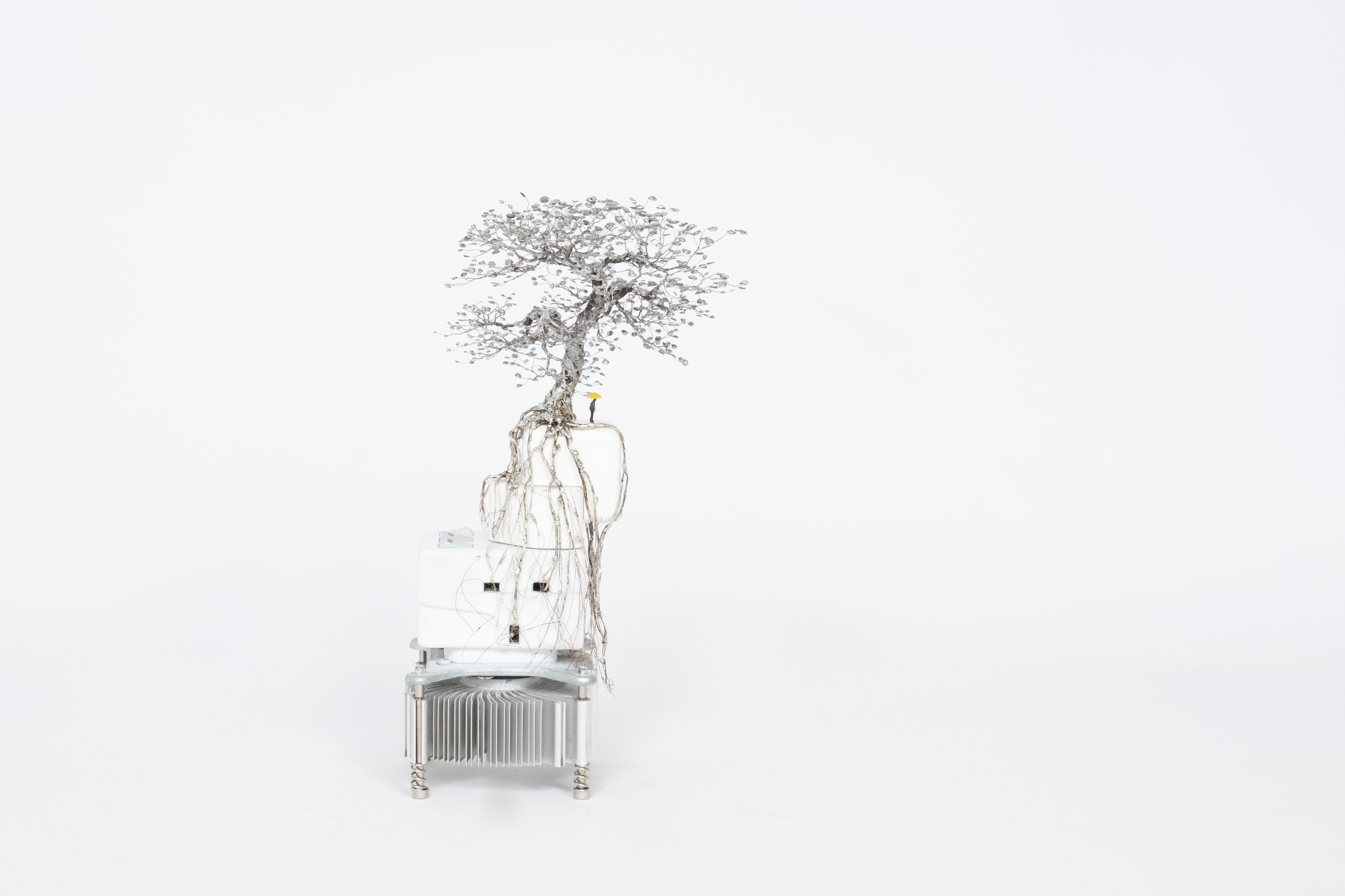 大樹底下好遮蔭? A Tree Protects XIX