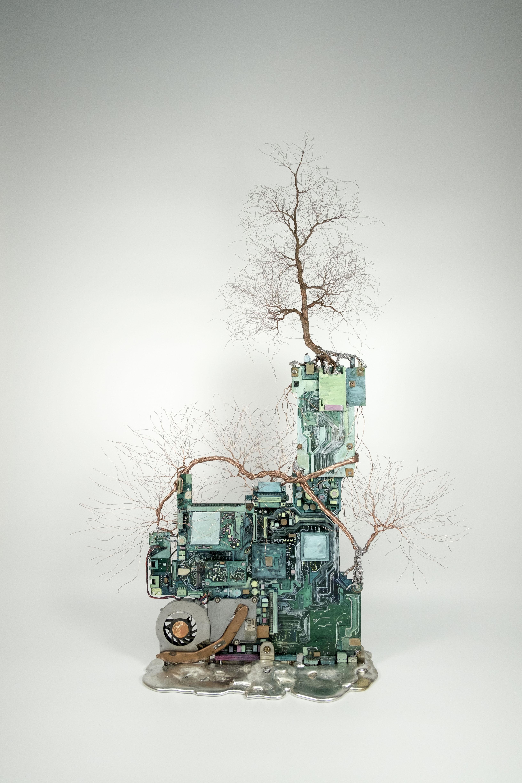 大樹底下好遮蔭?A tree protects? (VIII)