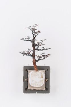 銅樹(三) Socket Tree III