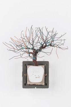 銅樹(五) Socket Tree V