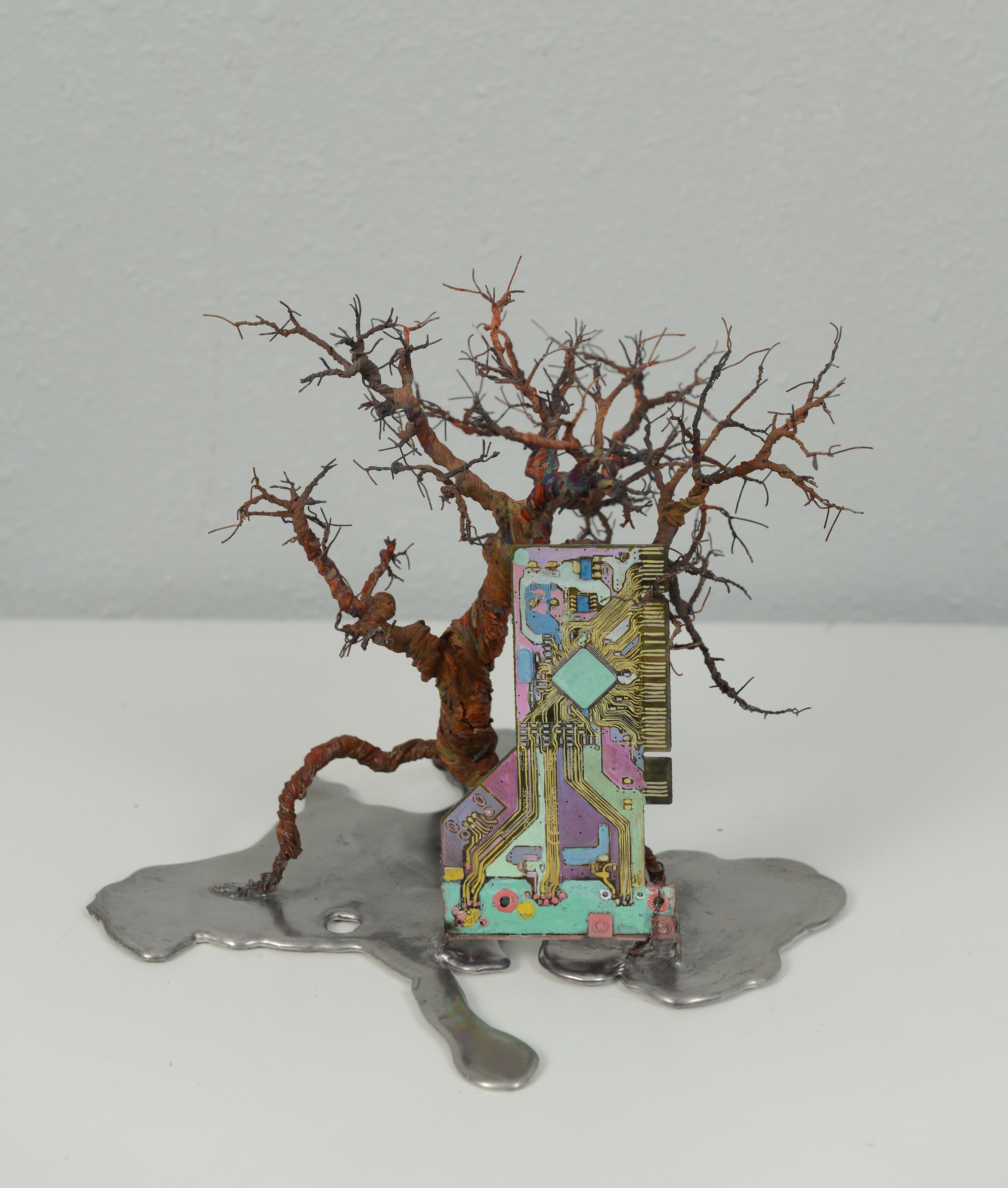 銀泥鐵樹(三) Iron Tree III