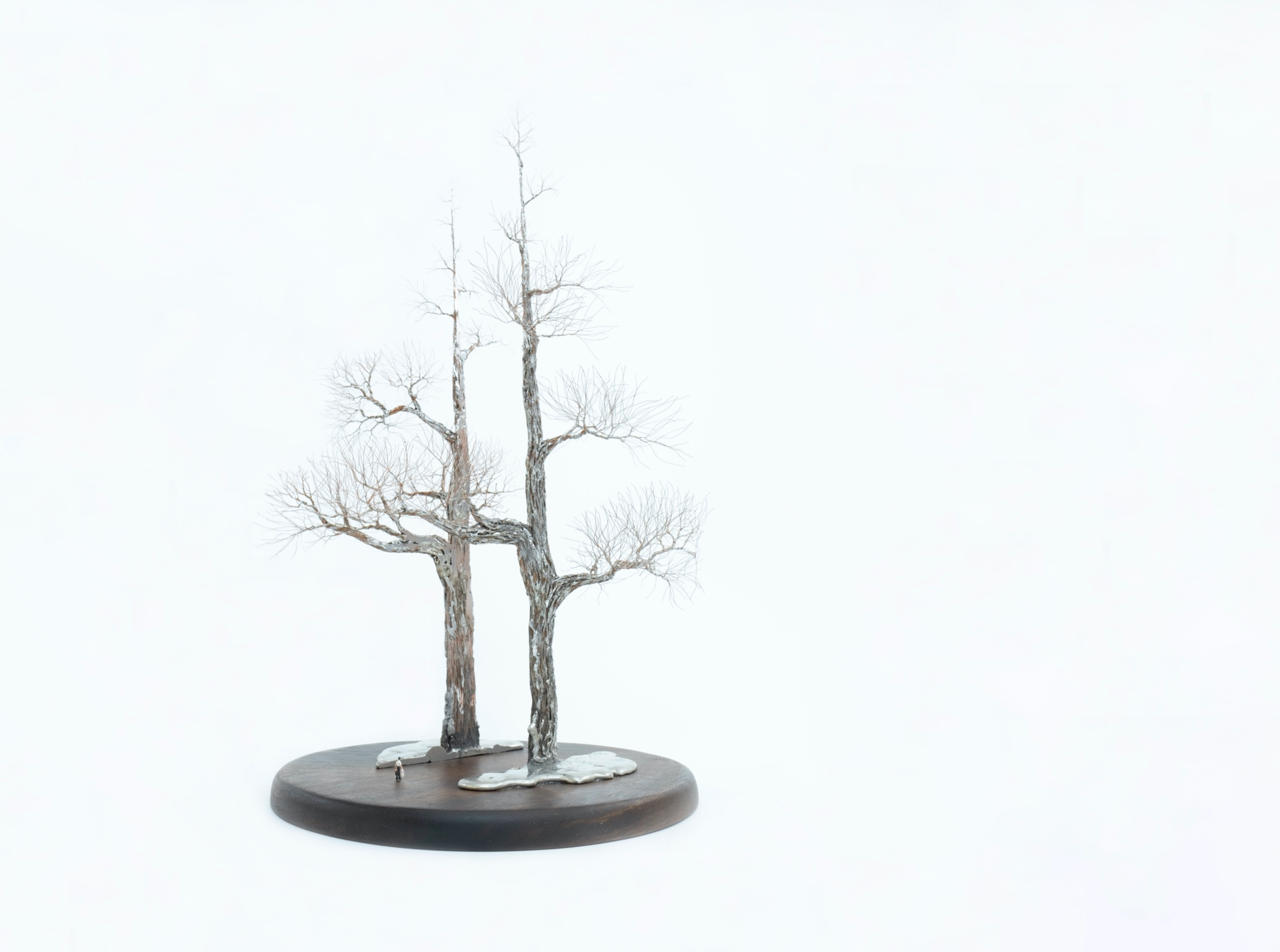 大樹底下好遮蔭?A Tree Protects?XXX