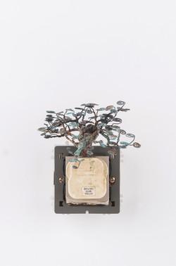 銅樹(四) Socket Tree IV