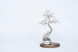 露の花 Dewflower VI