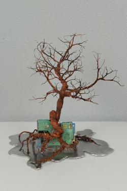 銀泥鐵樹(一) Iron Tree I