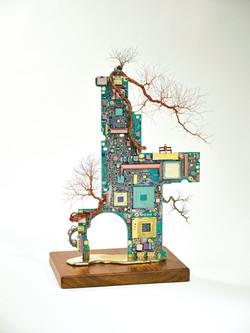 大樹底下好遮蔭?A tree protects? (IV)