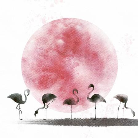 Pink Flamingo Moon #1