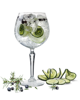 kisspng-gin-and-tonic-cocktail-garnish-v