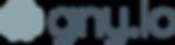 gny.io logo.png