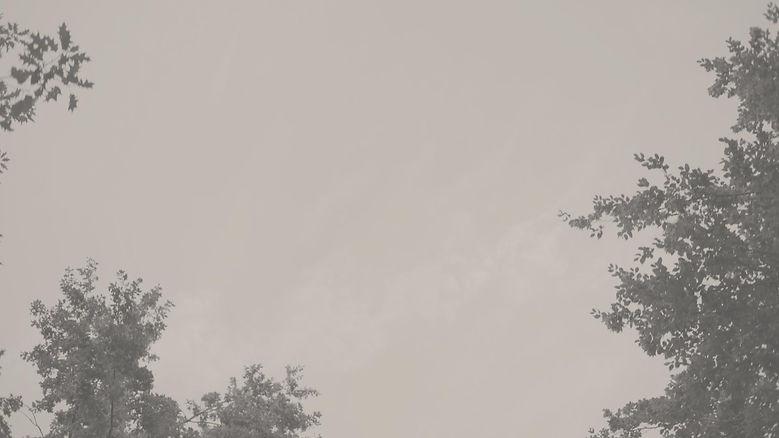 cSR_Blooming-Key__Trailer__SKY_v2.jpg