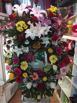 Flores Navalcarnero Bonsai Corona