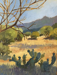 TUCSON _ IN THE SHADE 12x9 Oil on Panel $650.jpeg
