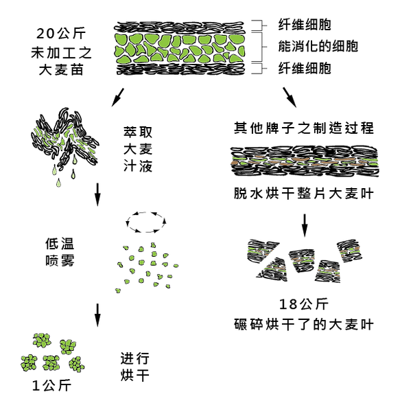BG processing method-03.png