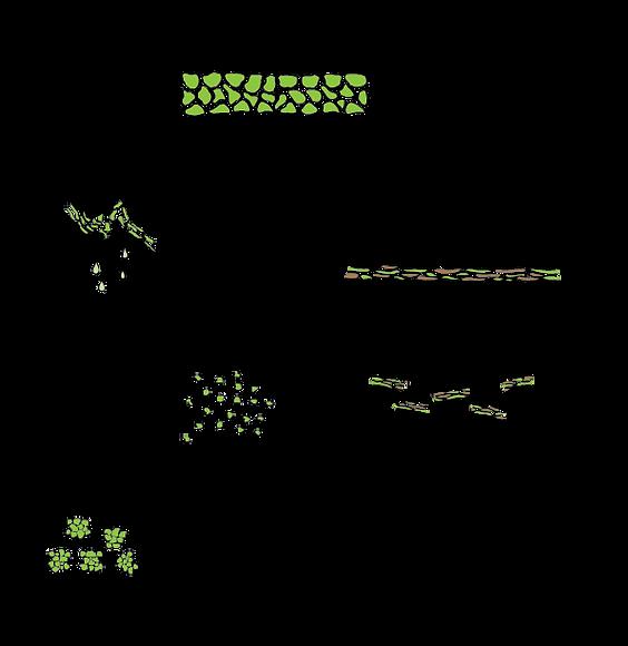 BG processing method-02.png