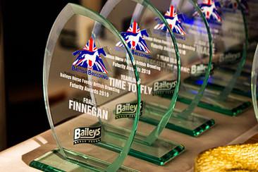 Award Night Events