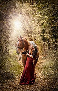 Equine Photography in Wiltshire