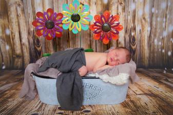 Flower Pot Babies