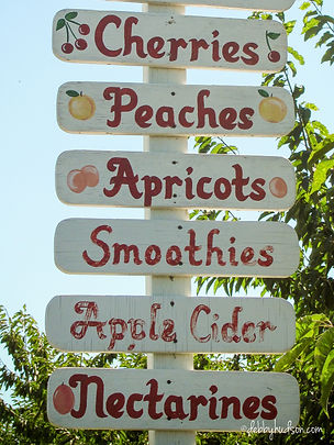 Fruit002.jpg