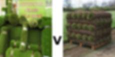 Grass_comp.jpg